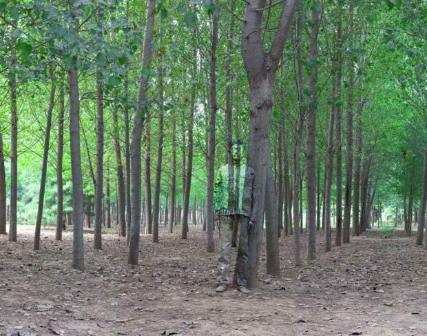 IMAGEM - Liu Bolin, artista da China, considerado o homem invisível