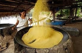 Por que a farinha de mandioca está tão cara em 2013? Veja os motivos