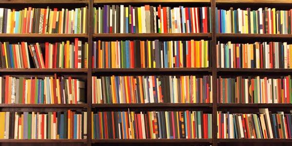 Livros inteligentes, títulos insensatos – Por Neemias dos Santos*