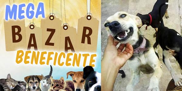 Convite para Mega Bazar Beneficente em Bacabal em prol dos cães do abrigo do grupo Bob Protetores