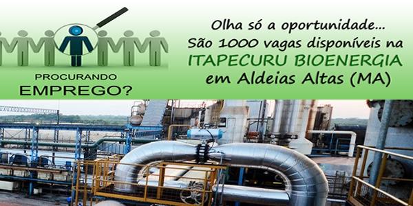Seletivo para 1.000 vagas de emprego na Itapecuru Bioenergia, em Aldeias Altas – MA