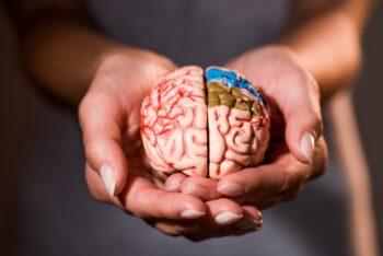 Curso superior de Psicologia a distância (EaD), existe?