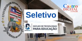 UEMANET abre 15 vagas em seletivo de equipe multidisciplinar – Edital 10/2020