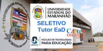 UEMA abre seletivo para tutor EaD nas áreas de Pedagogia e Psicologia – Edital UEMANET 13/2020