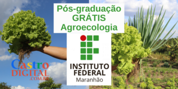 IFMA abre pós-graduação grátis em Agroecologia – Edital 08/2021