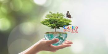 8 cursos de pós-graduação na área de meio ambiente